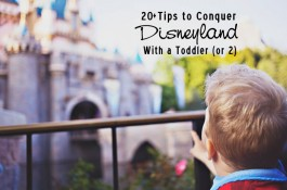 Tips to Conquer Disneyland with a Toddler