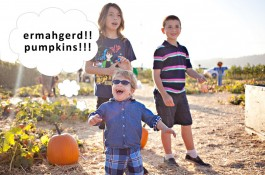 going places, underwood family farms, pumpkin patch, moorpark