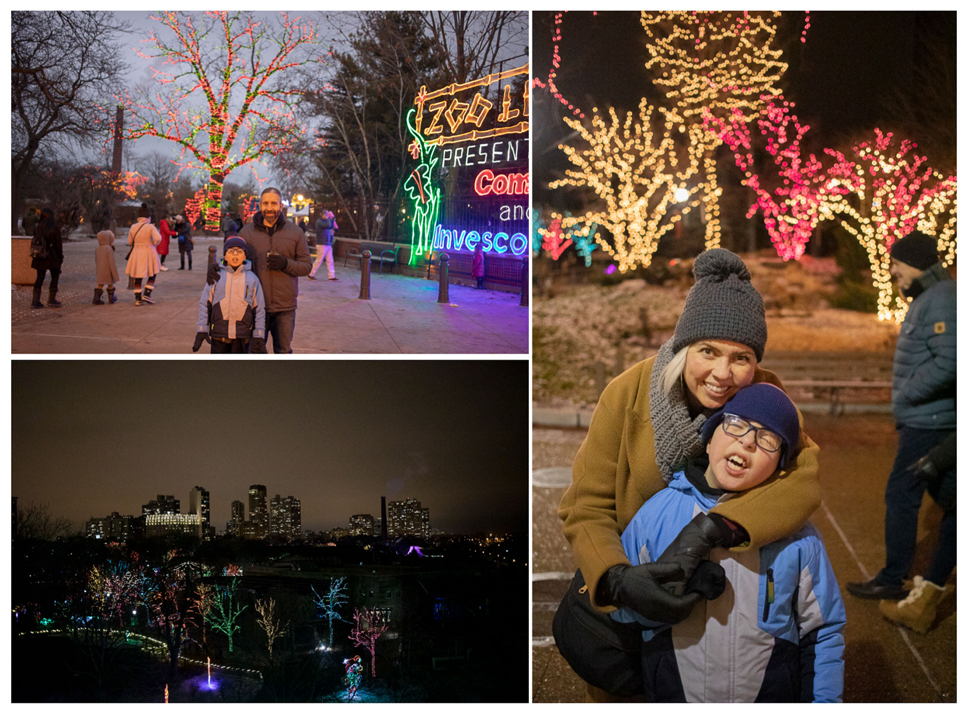 family trip, chicago, wisconsin, winter trip, christmas break, family vacation, city of chicago, madison, chicago zoo lights, christmas lights