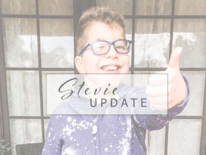 Stevie Update: Winter 2019